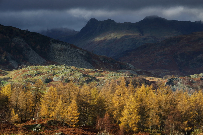 Langdale Pikes from Holme Fell 3