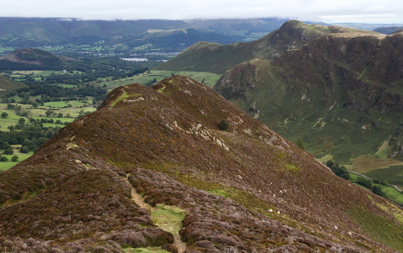 On route to Hindscarth : looking back with Catbells in the distance